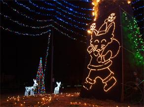クリスマスコン太