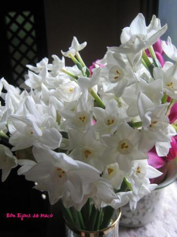 blog 20110321 030