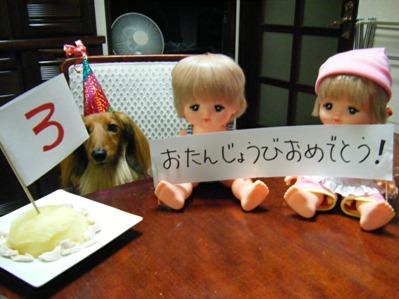 人形blog復活か!?