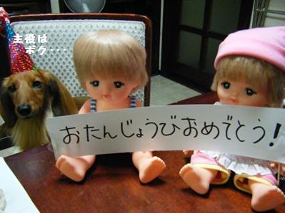 いつまで続く?続ける?人形blog