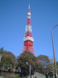 Tokyo Tower from Akabanebashi