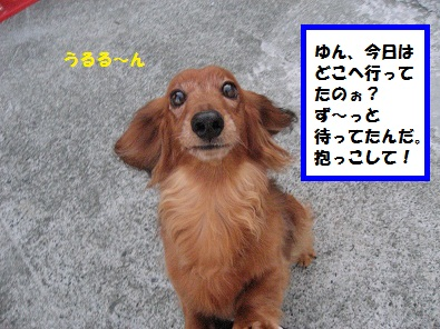 IMG_2564.jpg