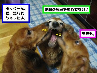 IMG_3220.jpg