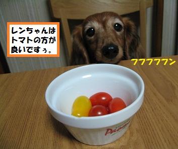 IMG_3223.jpg
