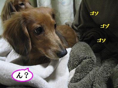 IMG_5926.jpg