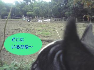 shirokuro 2