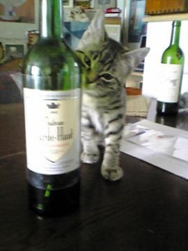 ワインとあたち