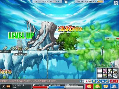 Maple0629.jpg
