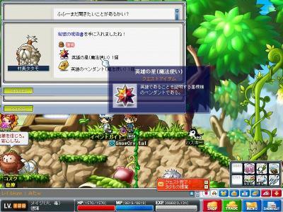 Maple0902.jpg