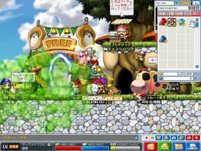 Maple0964.jpg
