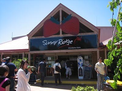 Sunny Ridge