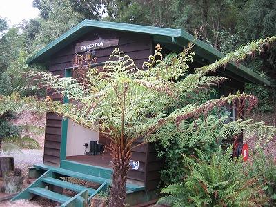 Otway Paradise Cottages