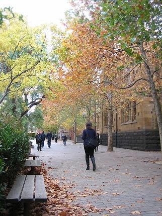秋色キャンパス