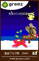gremz_081224_2.jpg