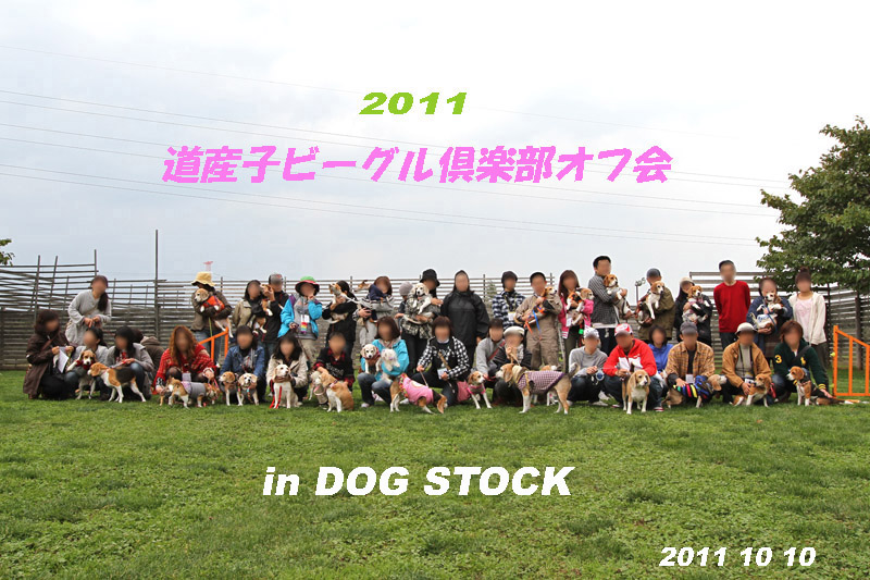 2011_1010dof 117b-80c