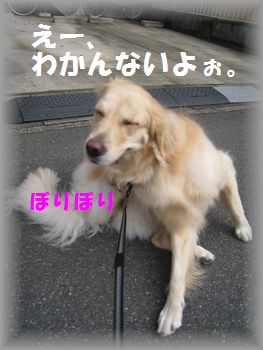 IMG_6966.jpg