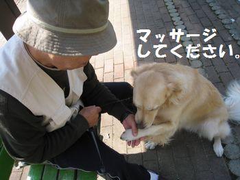 IMG_6988.jpg