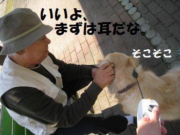IMG_6991.jpg