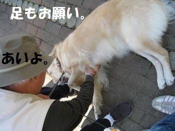 IMG_6994.jpg