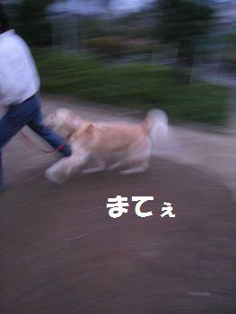 IMG_7043.jpg