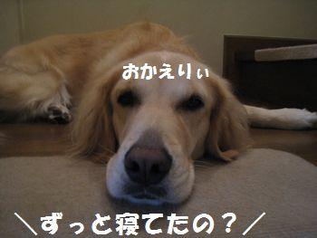 IMG_7211.jpg