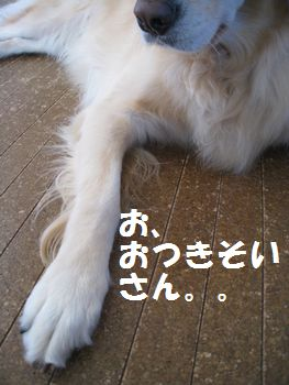 IMG_7239.jpg