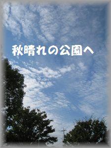 IMG_7263.jpg