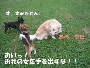 IMG_7648.jpg