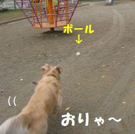 IMG_7682.jpg