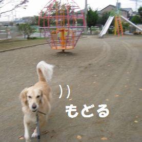 IMG_7683.jpg