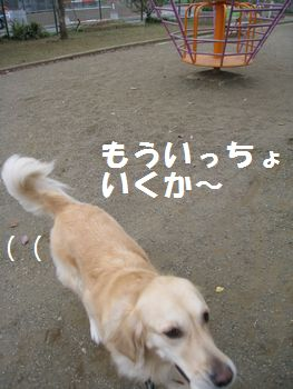 IMG_7689.jpg