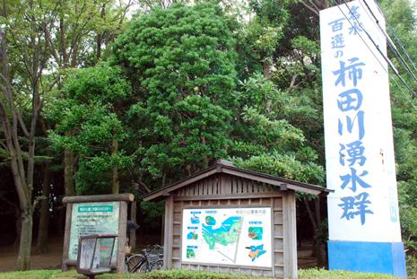 柿田川湧水群看板