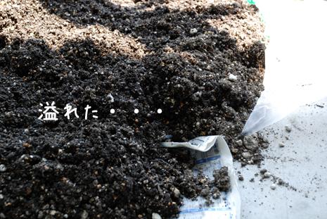 土の再生2