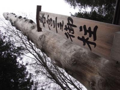 2011_05050034.jpg