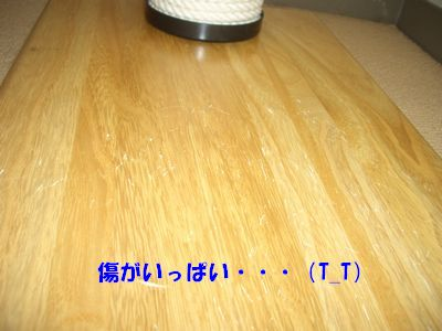 b080726-5