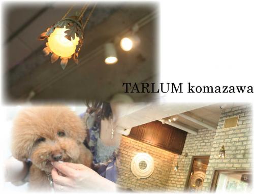 TARLUM