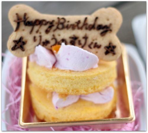 ケーキ137