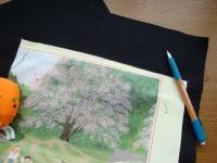 桜の画像ではなく