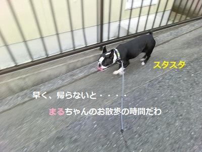 2011623 (14)