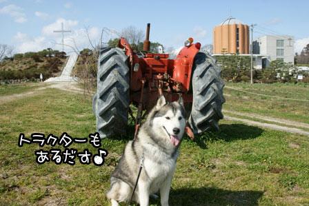 4_20120329222140.jpg