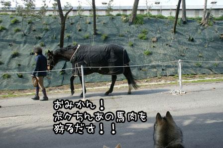 7_20120329222158.jpg