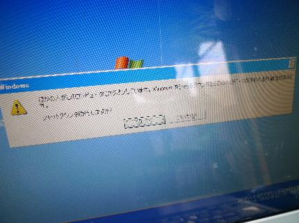2011_0210花0017