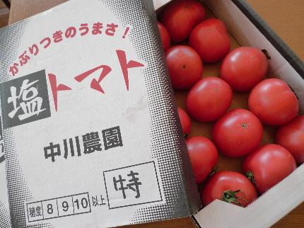 2011_0226花0028