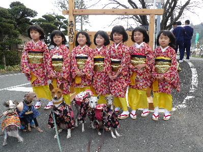 2011_0227花0038