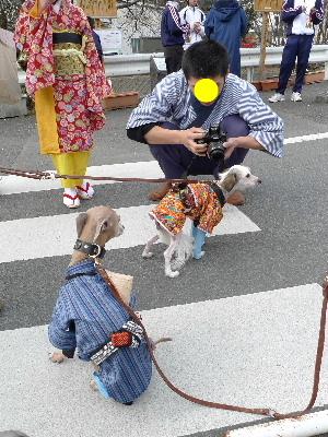 2011_0227花0034