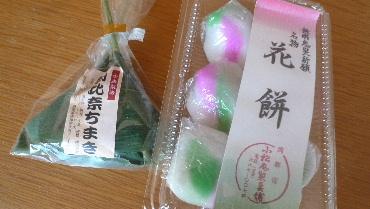2011_0227花0178