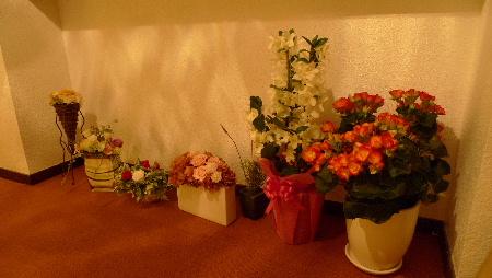 2011_0316花0019