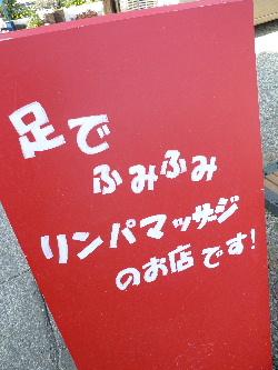 2011_0414花0032