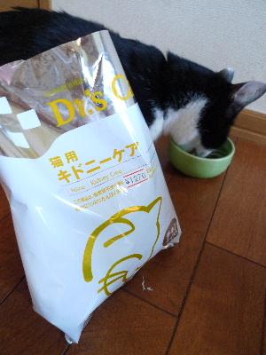 2011_0630ナッキー0004