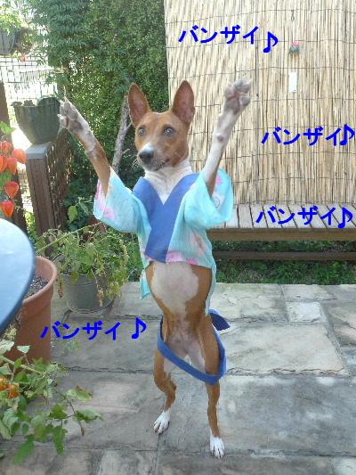 2011_0714ナッキー0057